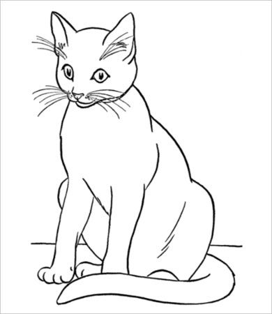 cat printable top 30 free printable cat coloring pages for kids cat printable