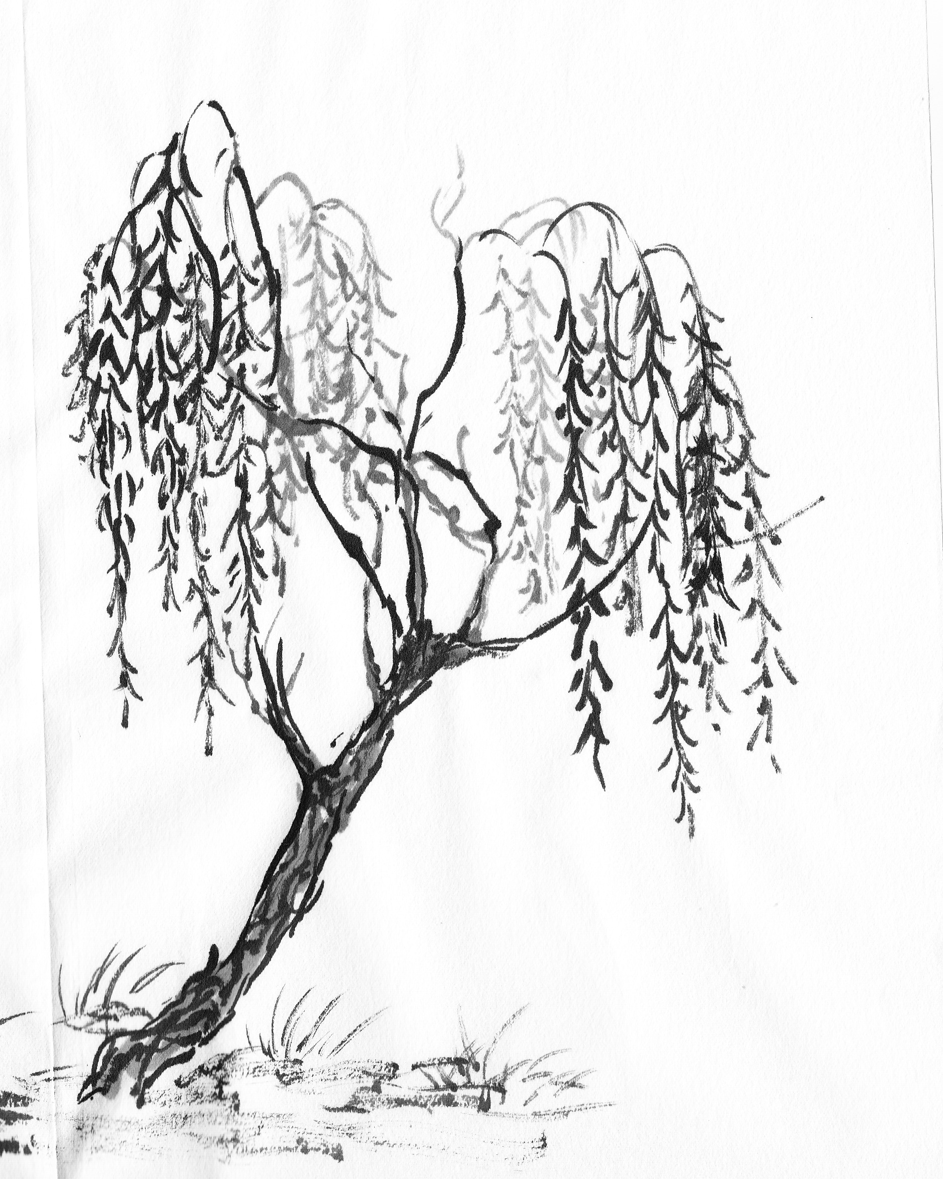 cherry tree sketch cherry blossom drawing outline at getdrawings free download sketch tree cherry