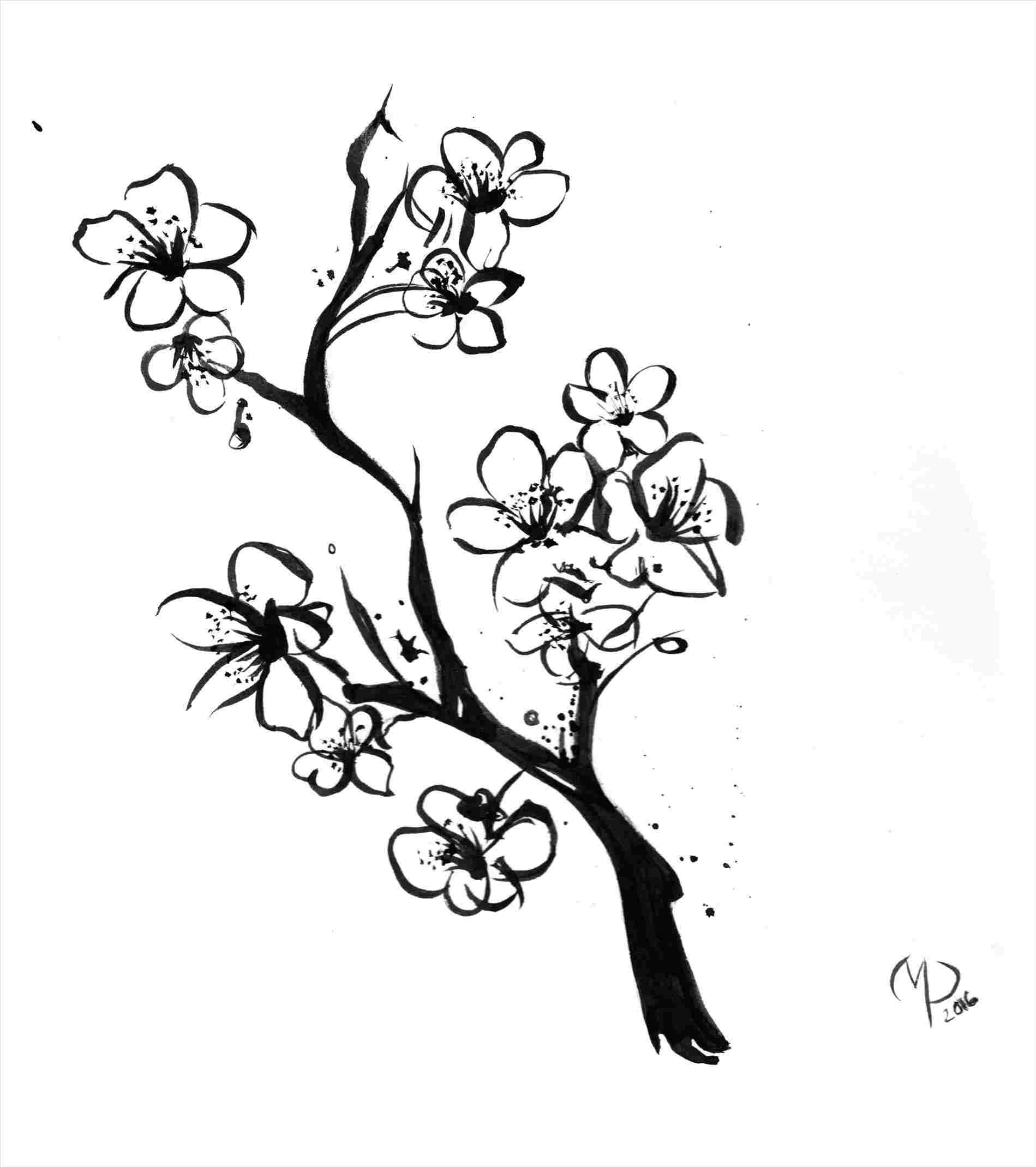 cherry tree sketch cherry blossom tree drawing outline at paintingvalleycom tree cherry sketch