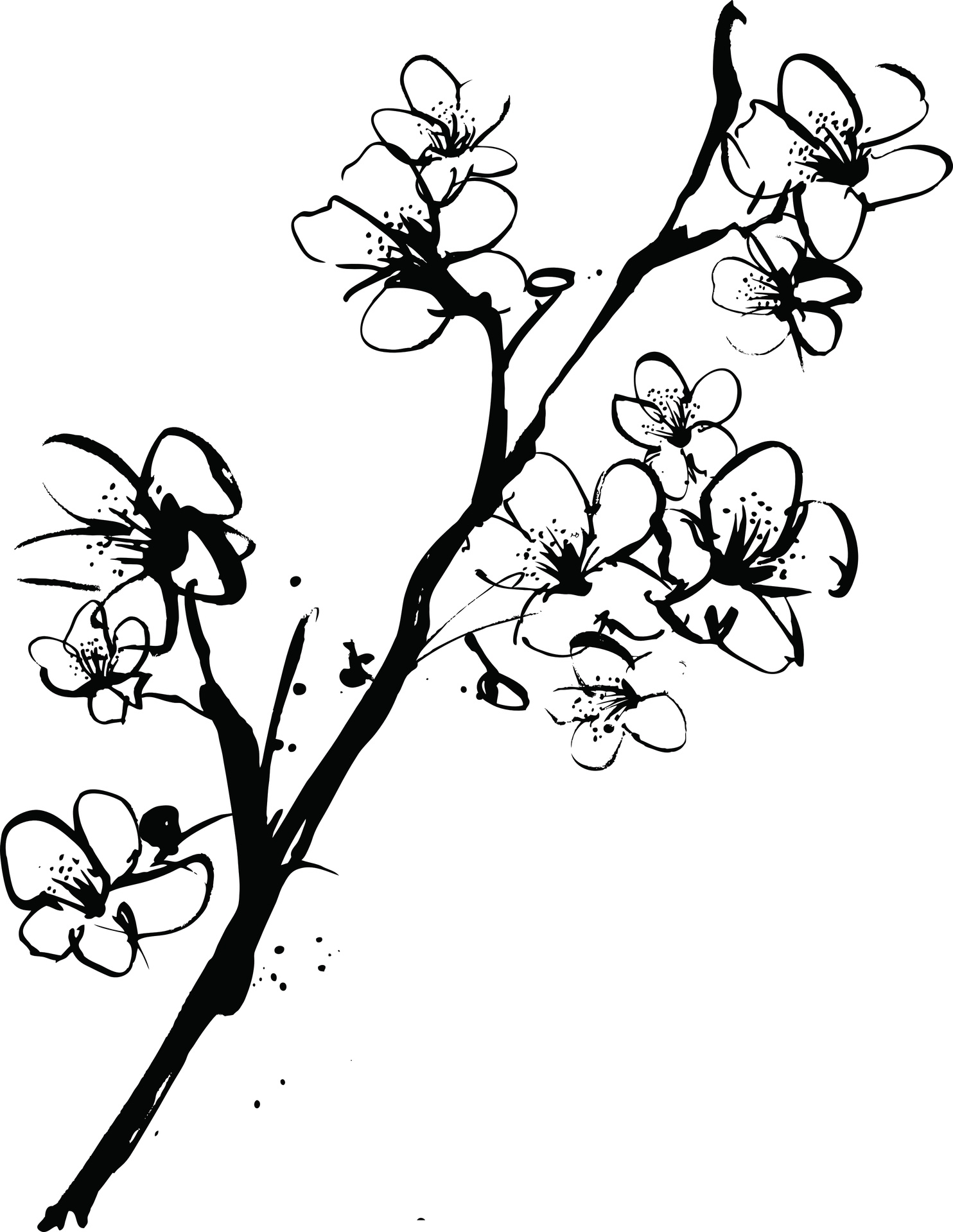 cherry tree sketch cherry blossoms tree drawing at getdrawings free download tree cherry sketch