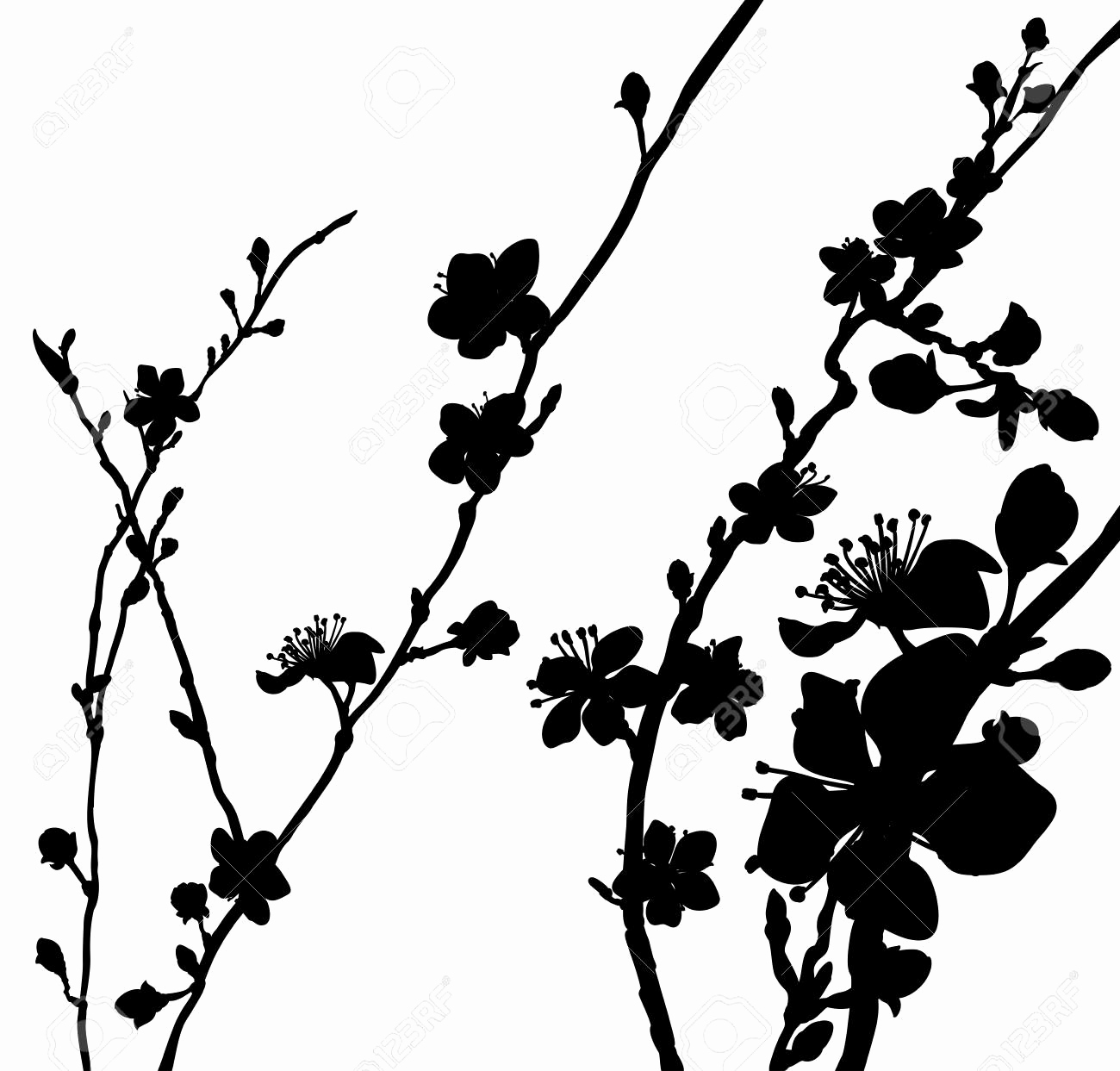 cherry tree sketch japanese cherry blossom flower drawing free download on tree sketch cherry