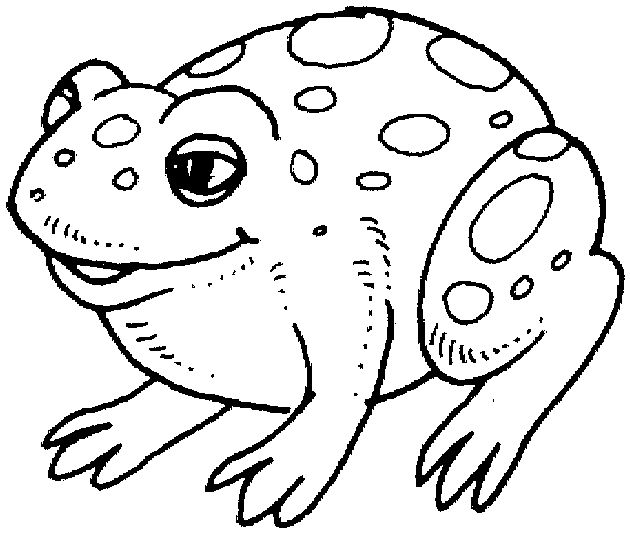 color by number frog color by number coloring pages by number frog color