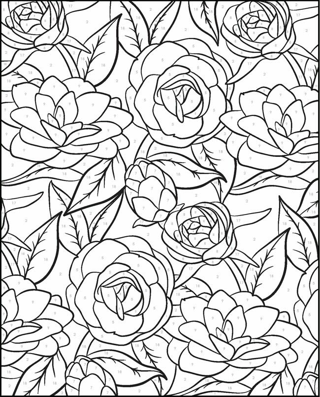 color by number pages for adults advanced color by number coloring pages coloring home color adults by for number pages