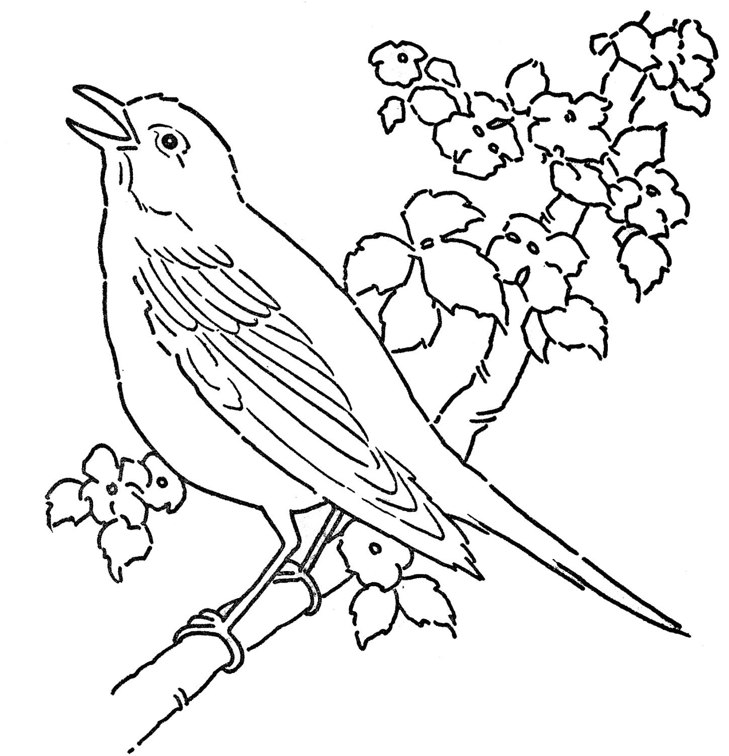 coloring bird printable bird coloring pages to download and print for free coloring bird printable