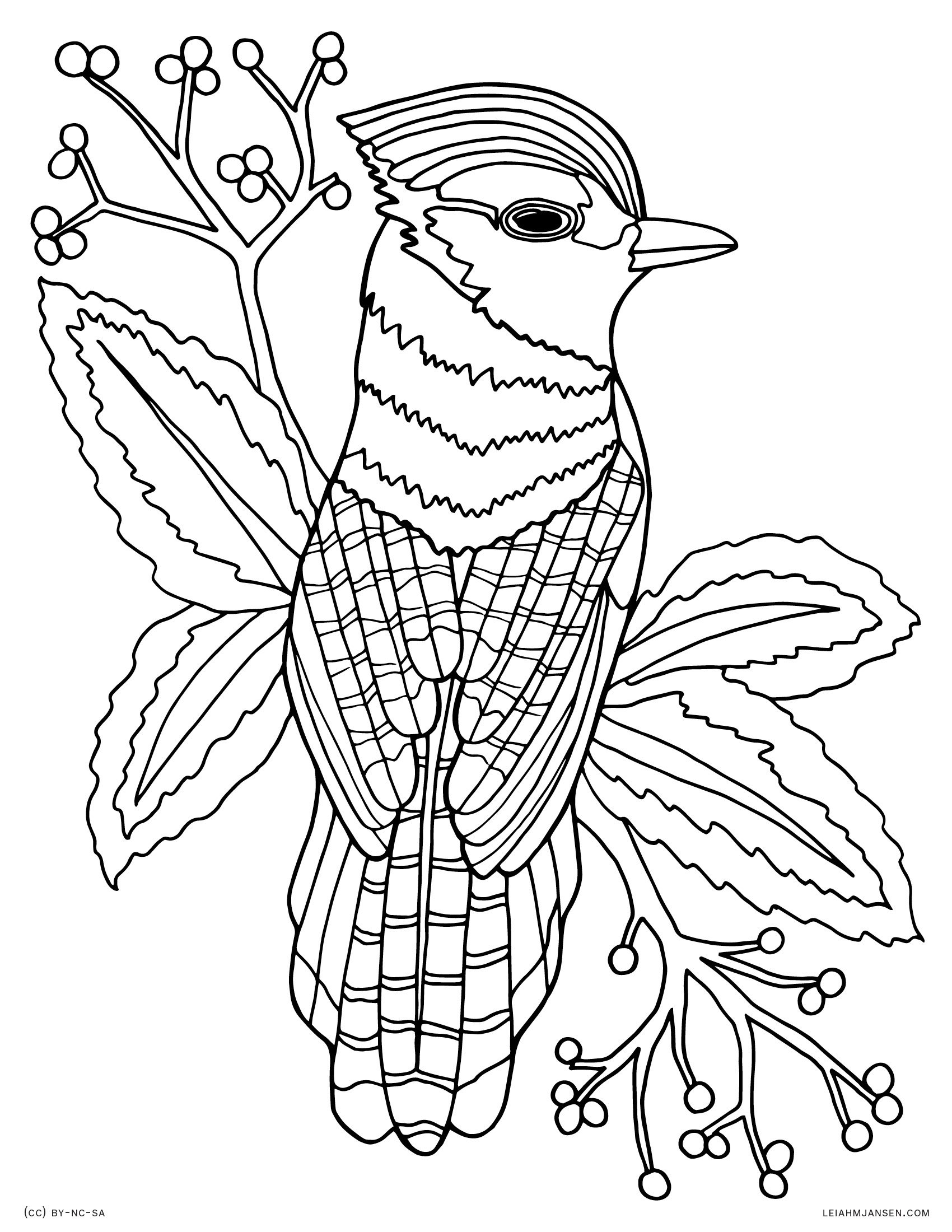 coloring bird printable bird of paradise coloring page at getcoloringscom free bird coloring printable