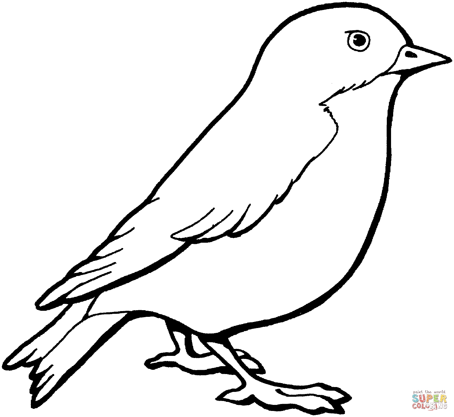 coloring bird printable canary coloring page at getcoloringscom free printable coloring bird printable