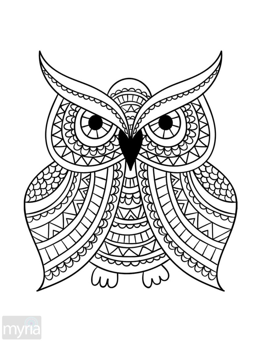 coloring book for adults easy free easy coloring pages for adults printable to download adults easy book coloring for