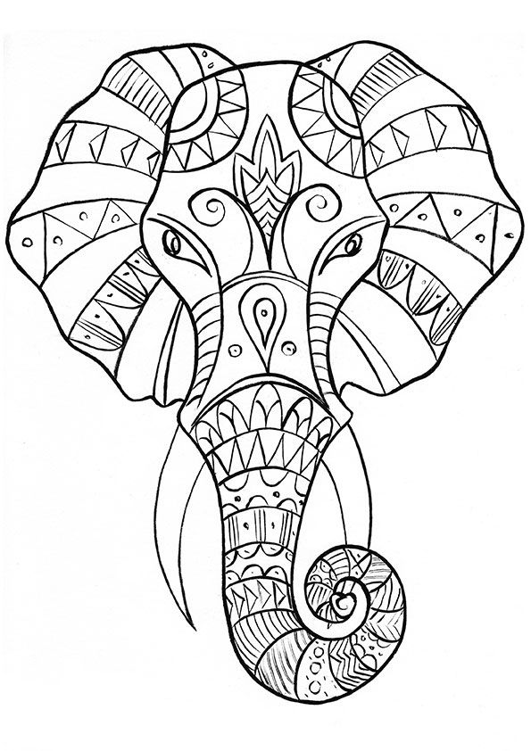 coloring books for grown ups the gorgeous colouring book for grown ups discover your ups books coloring for grown