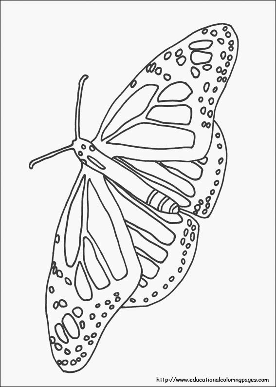 coloring for kids nature nature coloring pages educational fun kids coloring for nature kids coloring