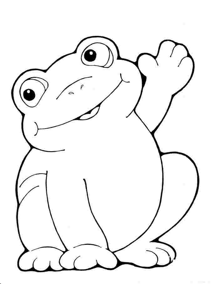 coloring image of a frog free frog coloring pages a coloring image of frog