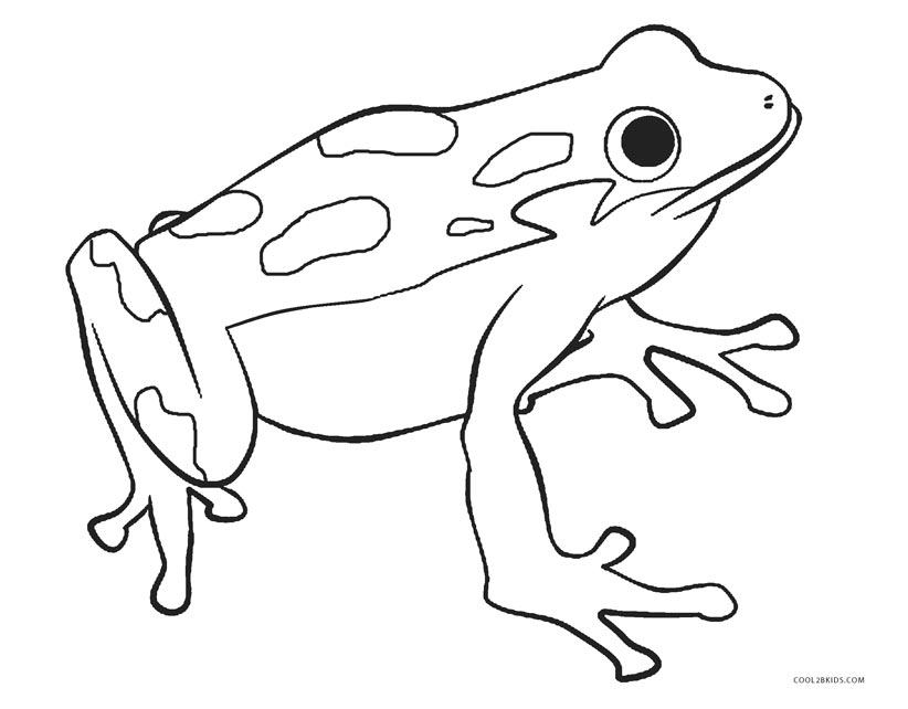 coloring image of a frog frog drawing for kids at getdrawings free download coloring of a image frog
