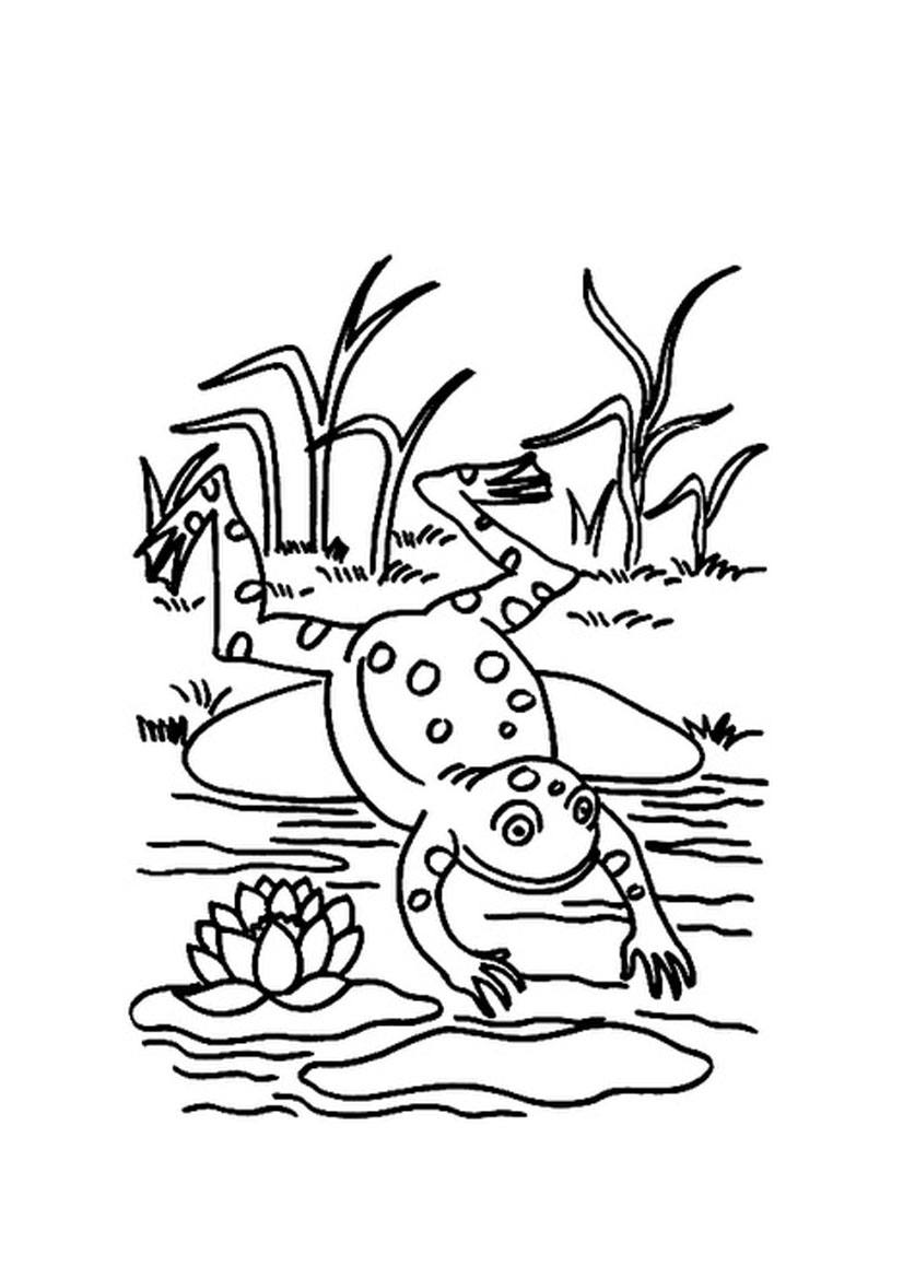 coloring image of a frog tree frog coloring pages printable bestappsforkidscom frog of image a coloring