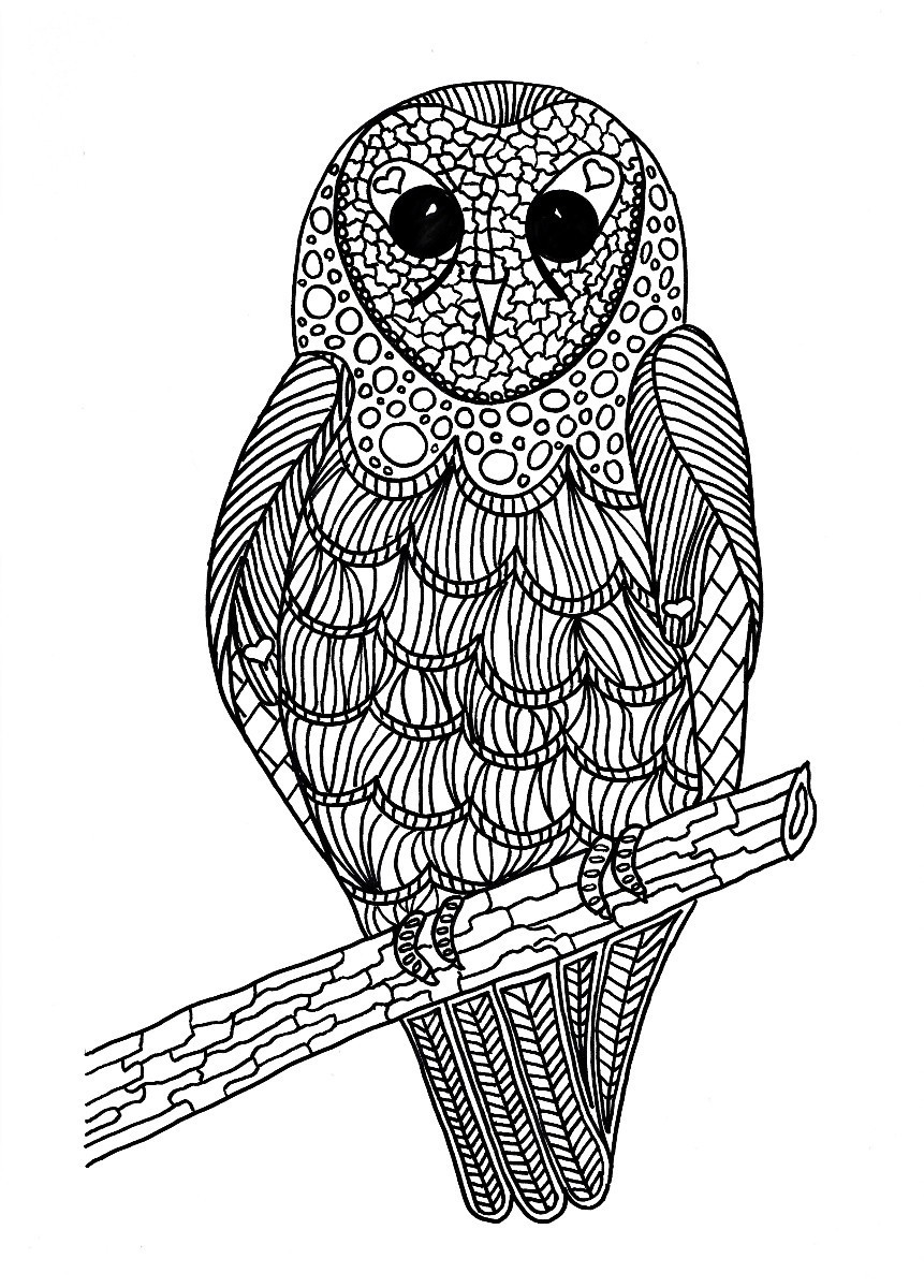 coloring images lunchtime bird coloring pages thriftyfun coloring images