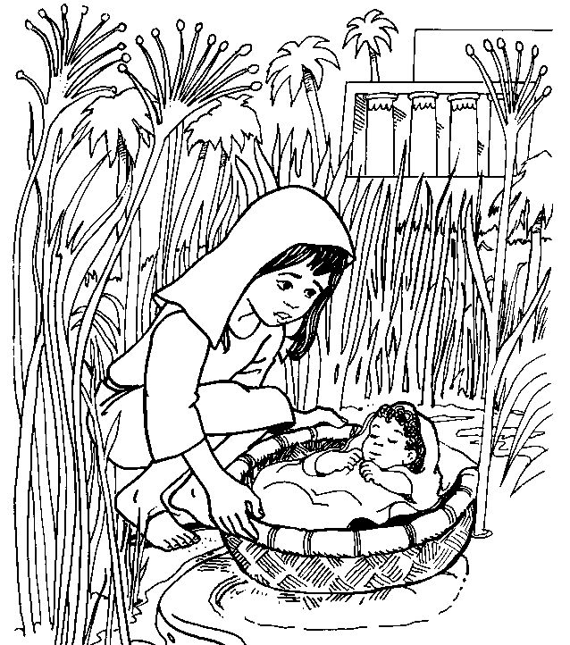 coloring moses in a basket moses mother put moses into a basket in nile river moses a basket in coloring
