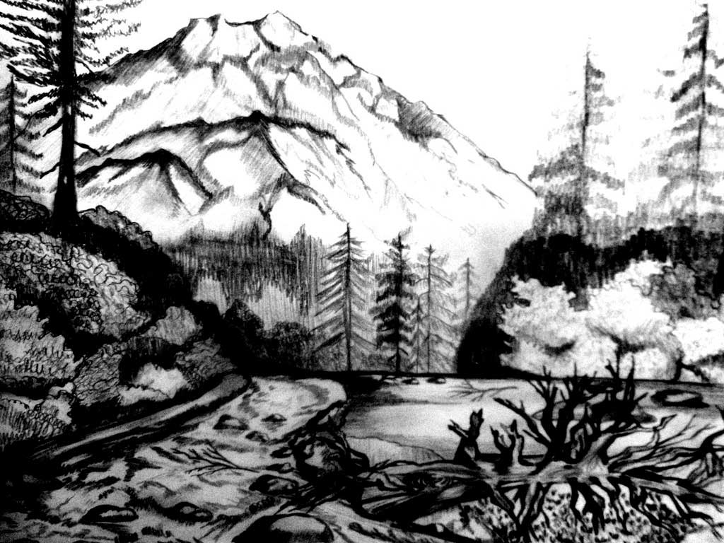 coloring nature images coloring book clip art library images nature coloring