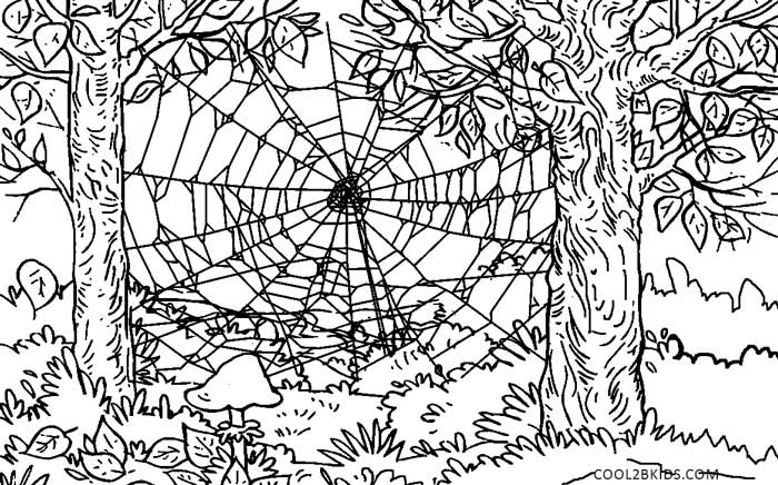 coloring nature images harmony of nature adult coloring book pg21 coloring images coloring nature