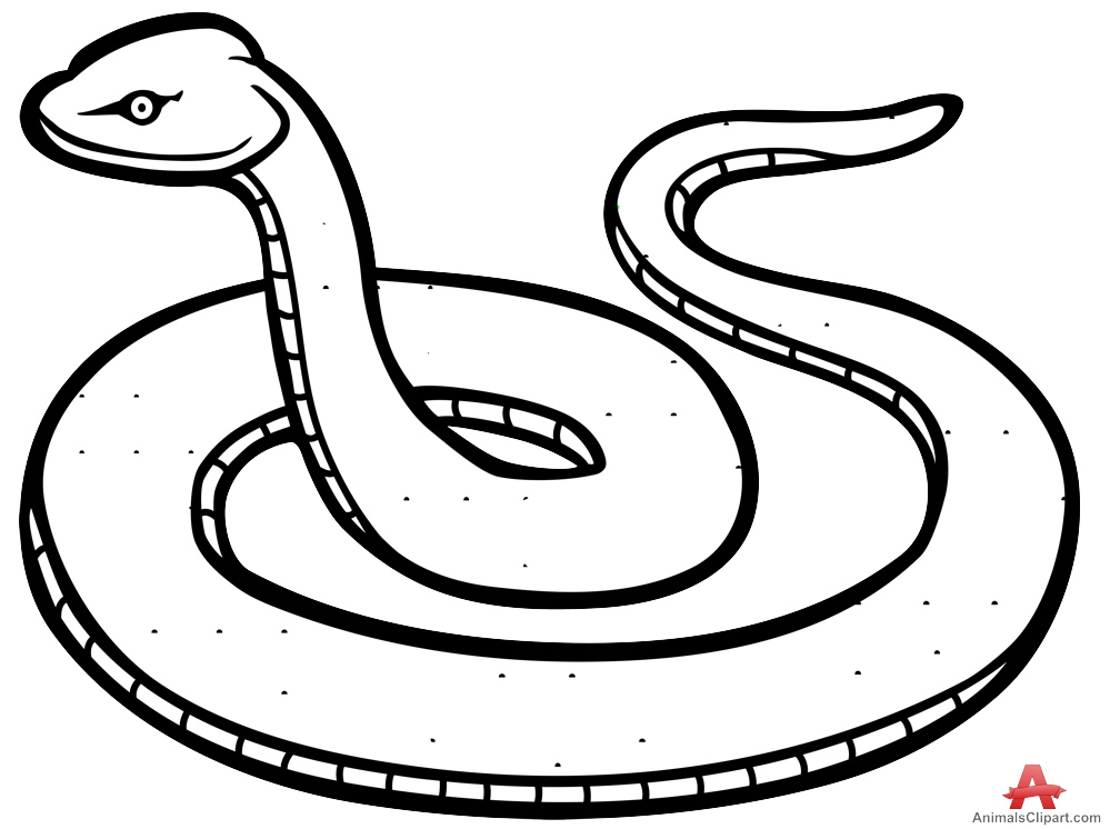 coloring outline snake clipart black and white snake clip art for kids free clipart images wikiclipart coloring black and snake outline white clipart