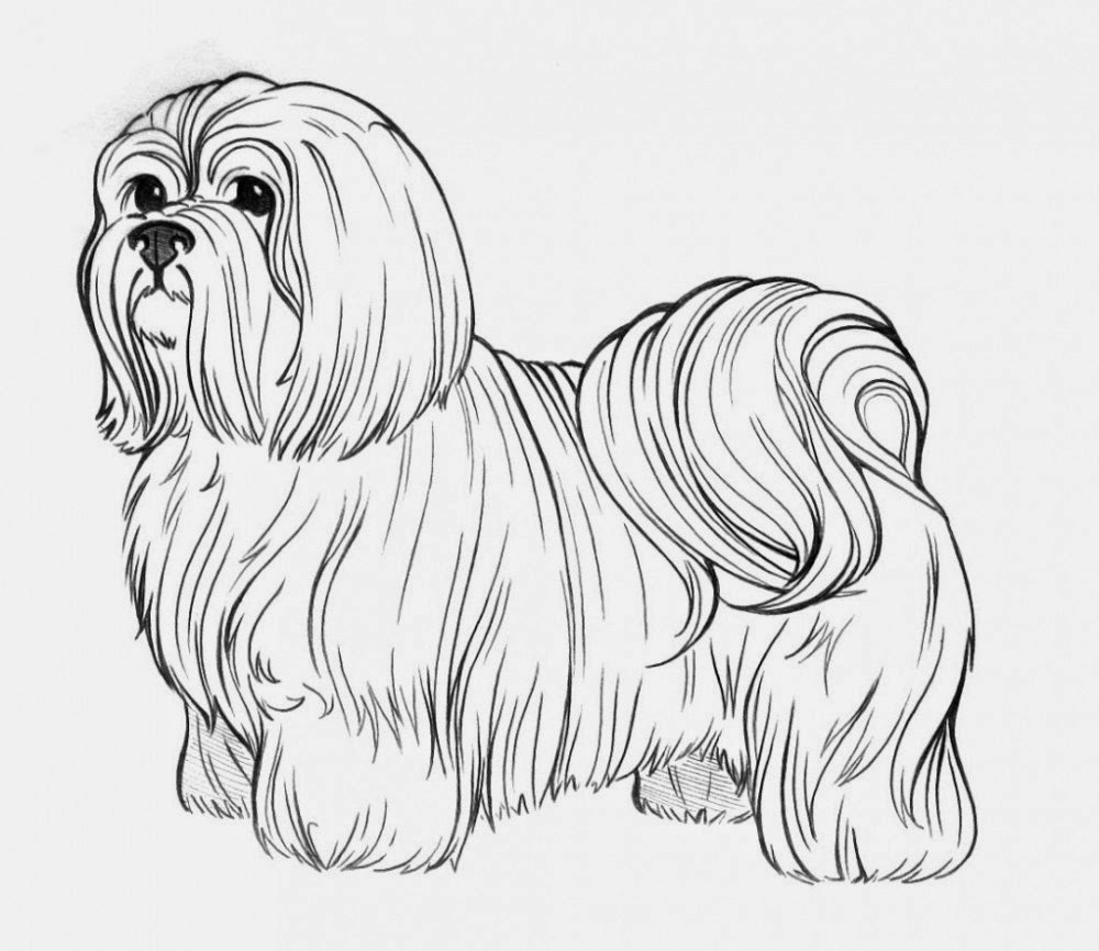 coloring page of a dog coloring pages dogs coloring pages free and printable dog coloring of a page