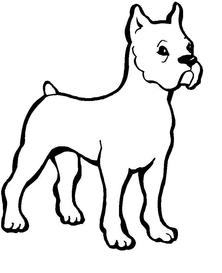 coloring page of a dog dog breed coloring pages coloring of dog a page