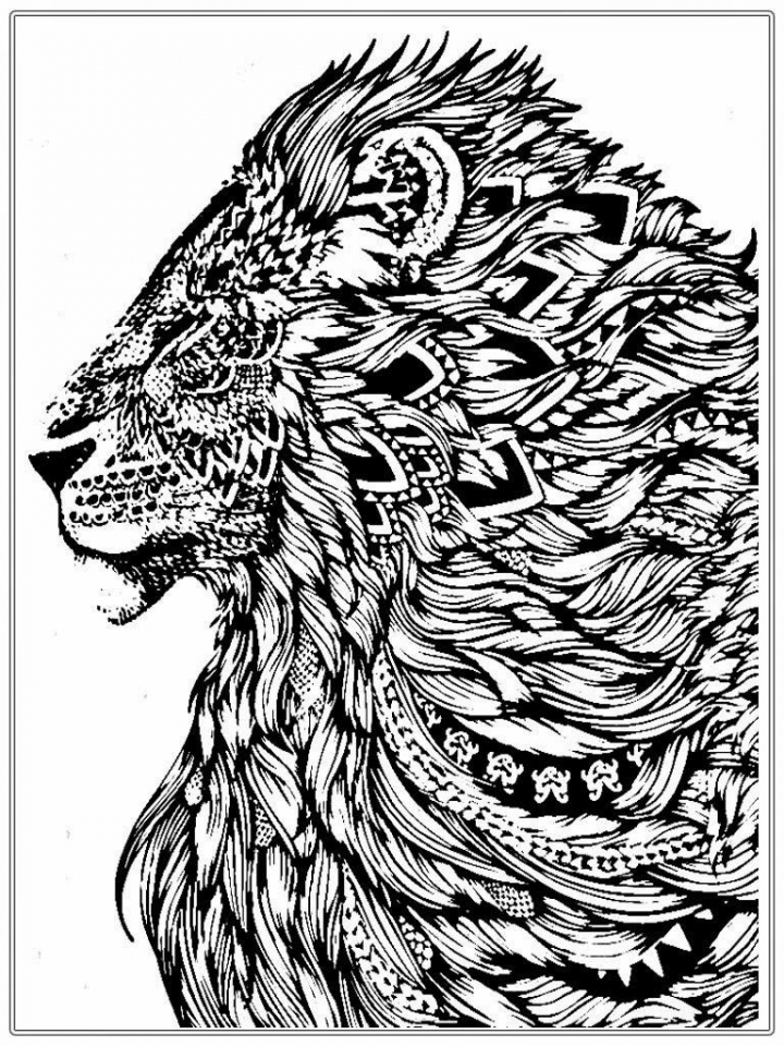 coloring page of a lion get this lion coloring pages for adults printable 64831 coloring of a lion page