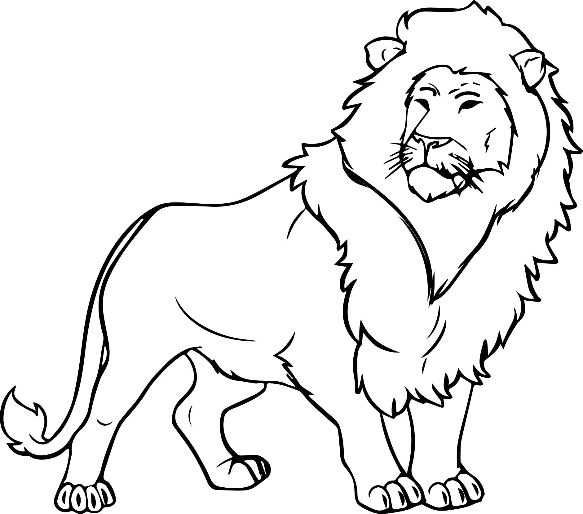 coloring page of a lion lion color drawing at getdrawings free download lion page coloring a of