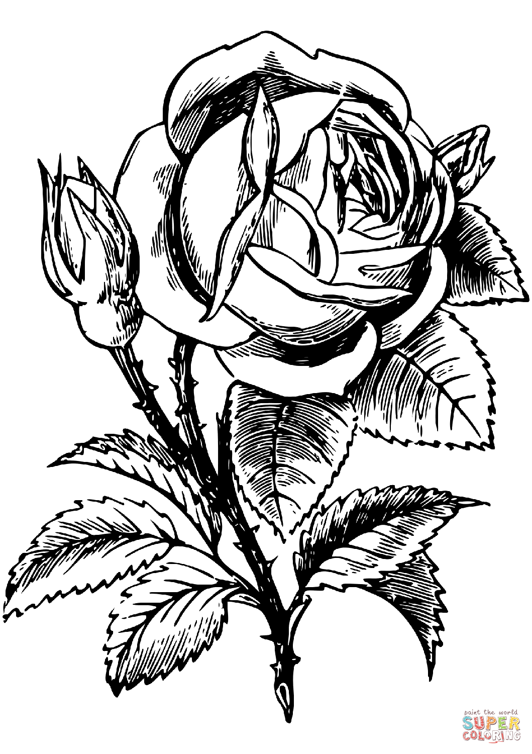 coloring page rose roses coloring pages getcoloringpagescom rose coloring page