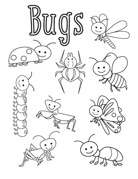 coloring pages bugs bugs coloring pages funnycrafts bugs pages coloring