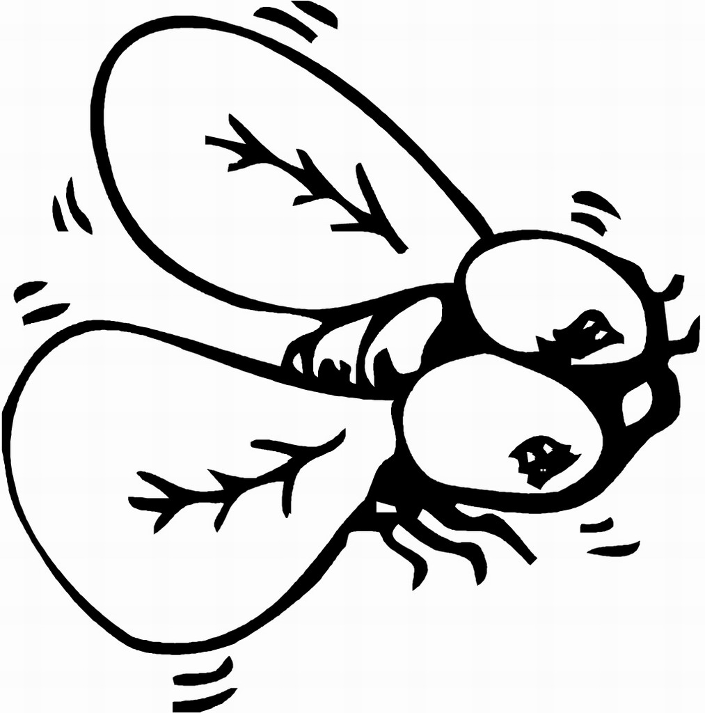 coloring pages bugs spring bug coloring pages download and print for free pages bugs coloring