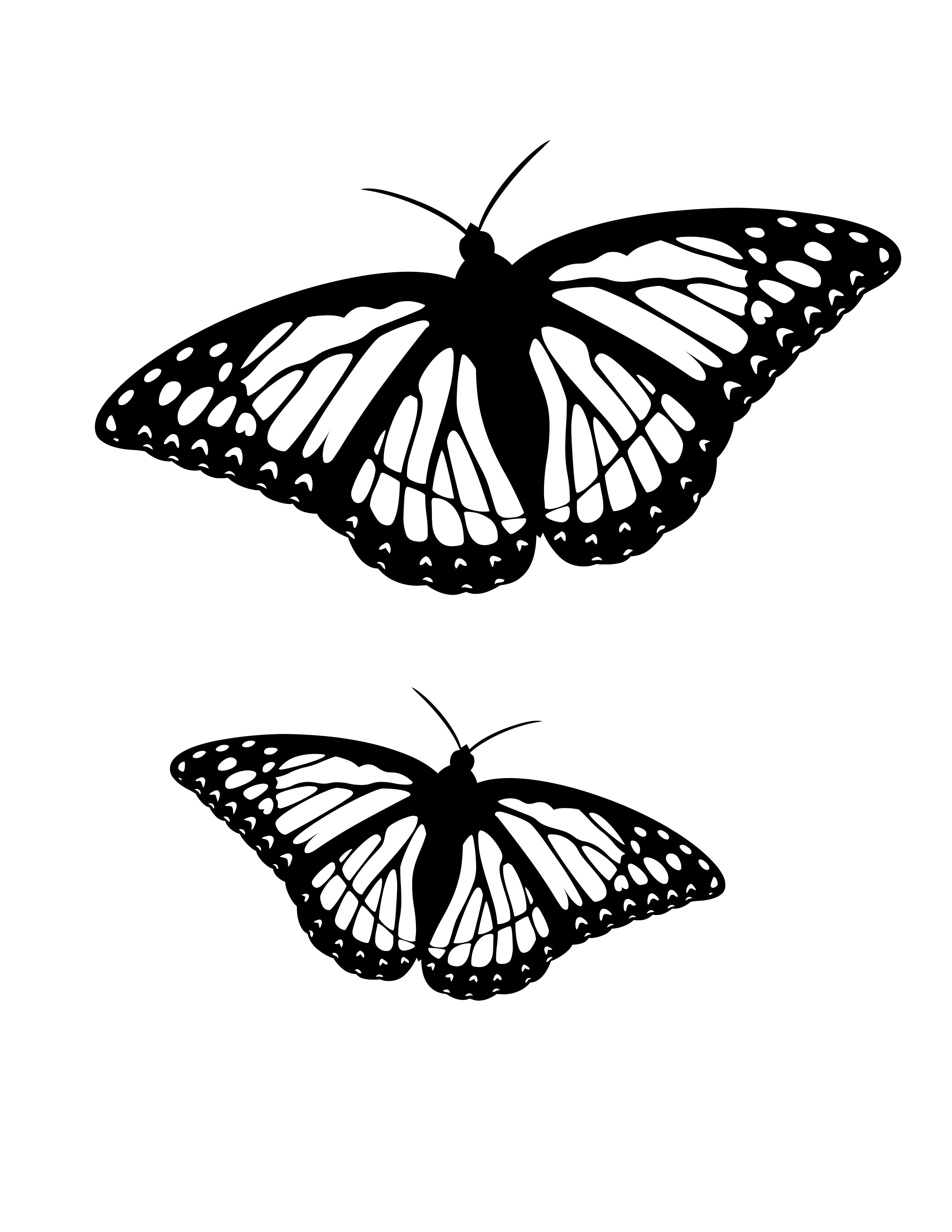 coloring pages butterfly butterfly coloring pages pages butterfly coloring 1 2