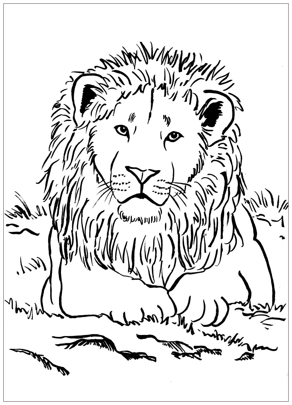 coloring pages for kids lion lion coloring pages to download and print for free coloring lion pages for kids