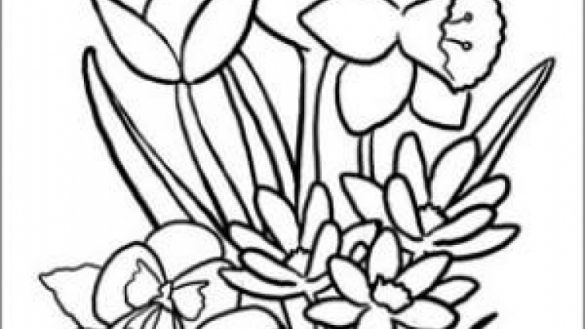 coloring pages for seniors coloring pages for seniors seniors pages coloring for