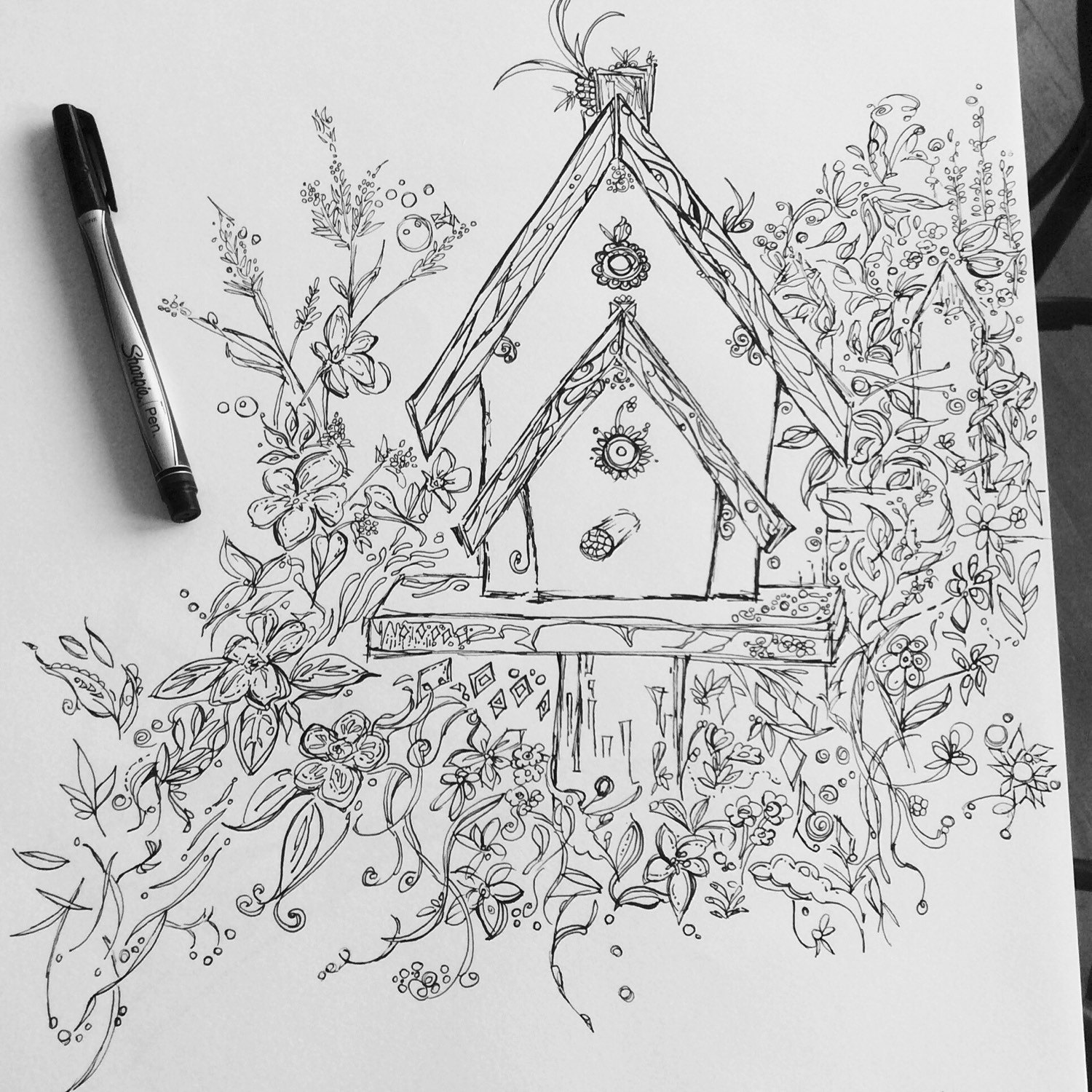 coloring pages house with garden fun funky birds birdhouses adult coloring page pages garden with house coloring