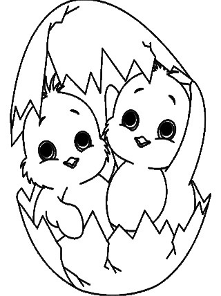 coloring pages of baby chicks pin em decorate classroom chicks coloring of baby pages