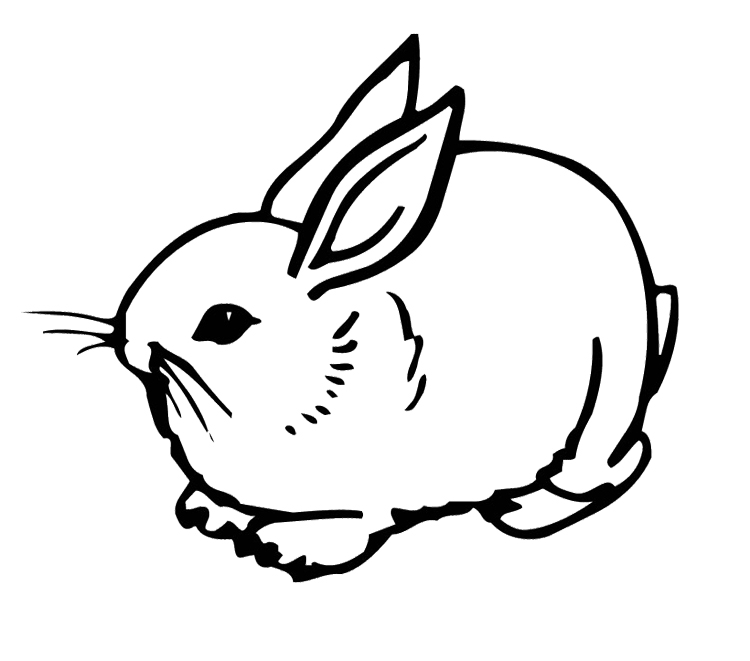 coloring pages of bunny rabbits rabbit coloring pages free download on clipartmag coloring pages rabbits bunny of