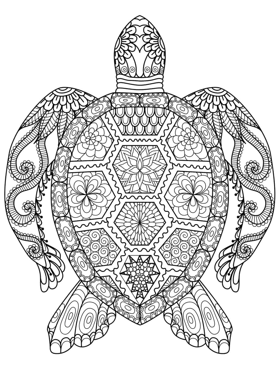 coloring pages of turtle 20 gorgeous free printable adult coloring pages page 3 turtle coloring of pages