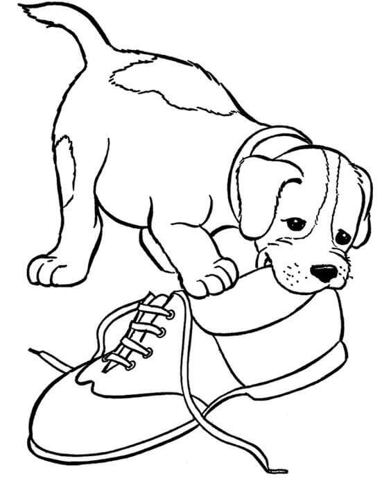 coloring pic of dog printable dog coloring pages for kids coloring of pic dog