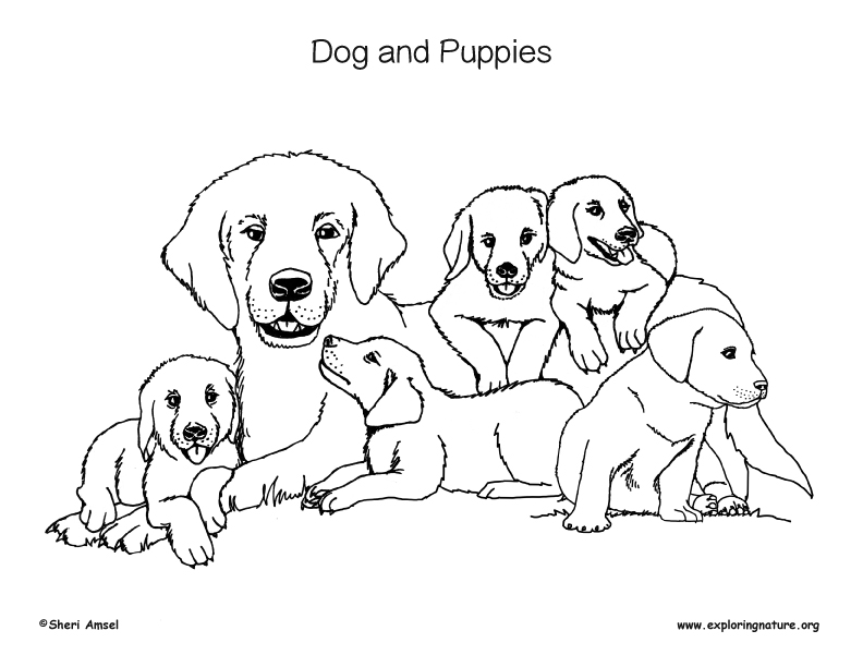 coloring pic of dog puppy dog pals rolly printable coloring page get pic of coloring dog