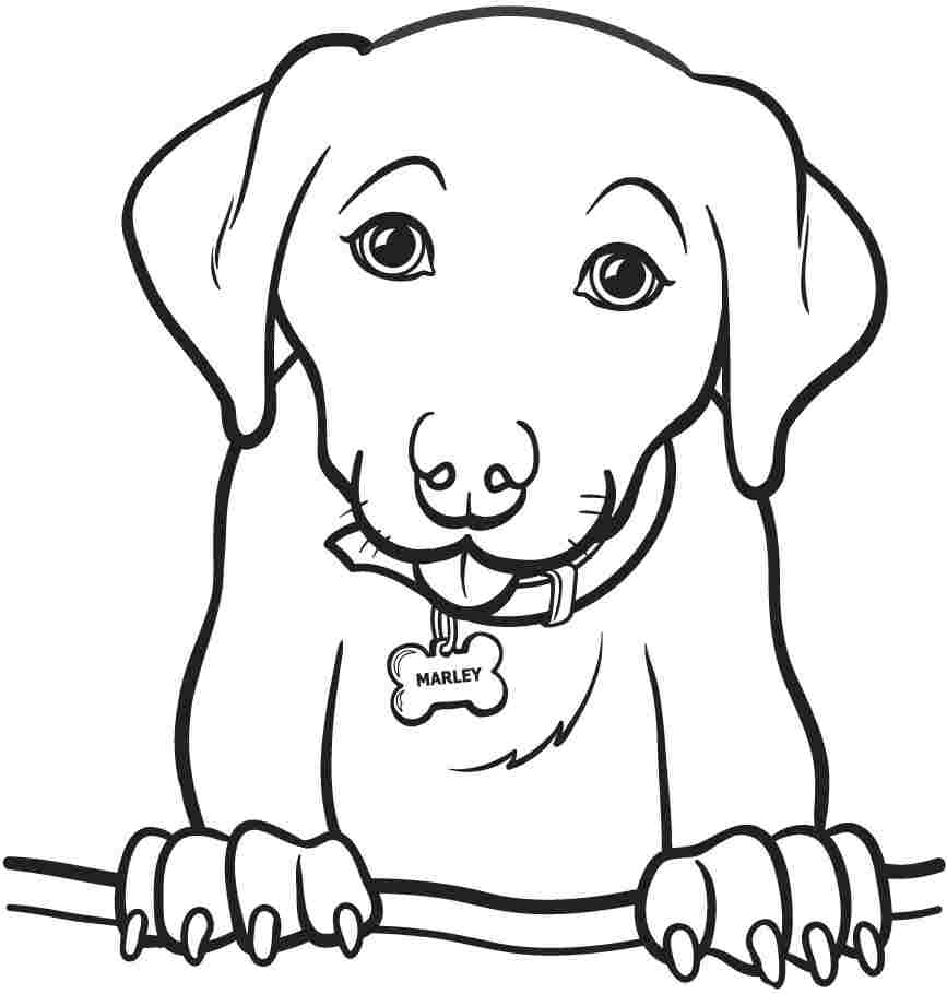 coloring pic of dog real dog coloring pages at getcoloringscom free dog pic of coloring