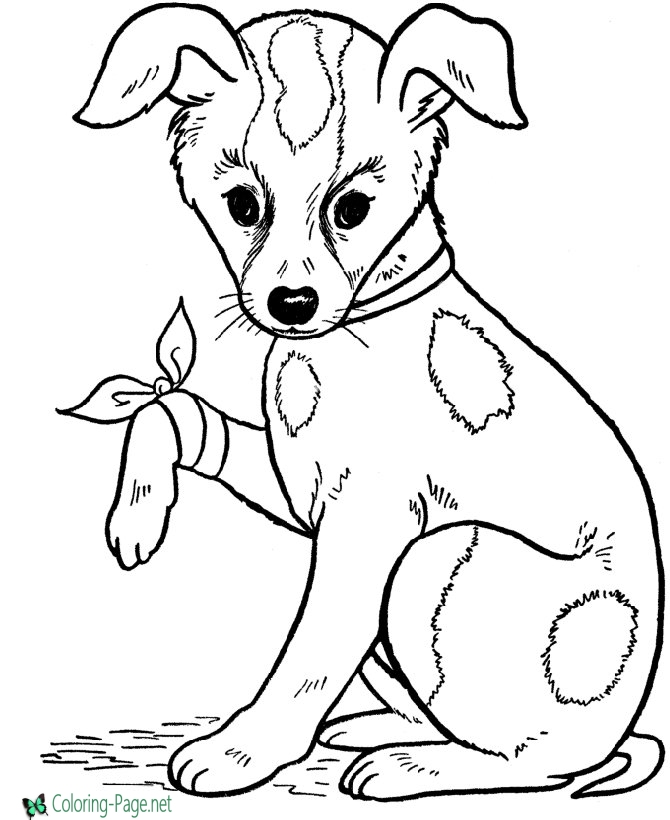 coloring picture dog printable dog coloring pages for kids dog picture coloring