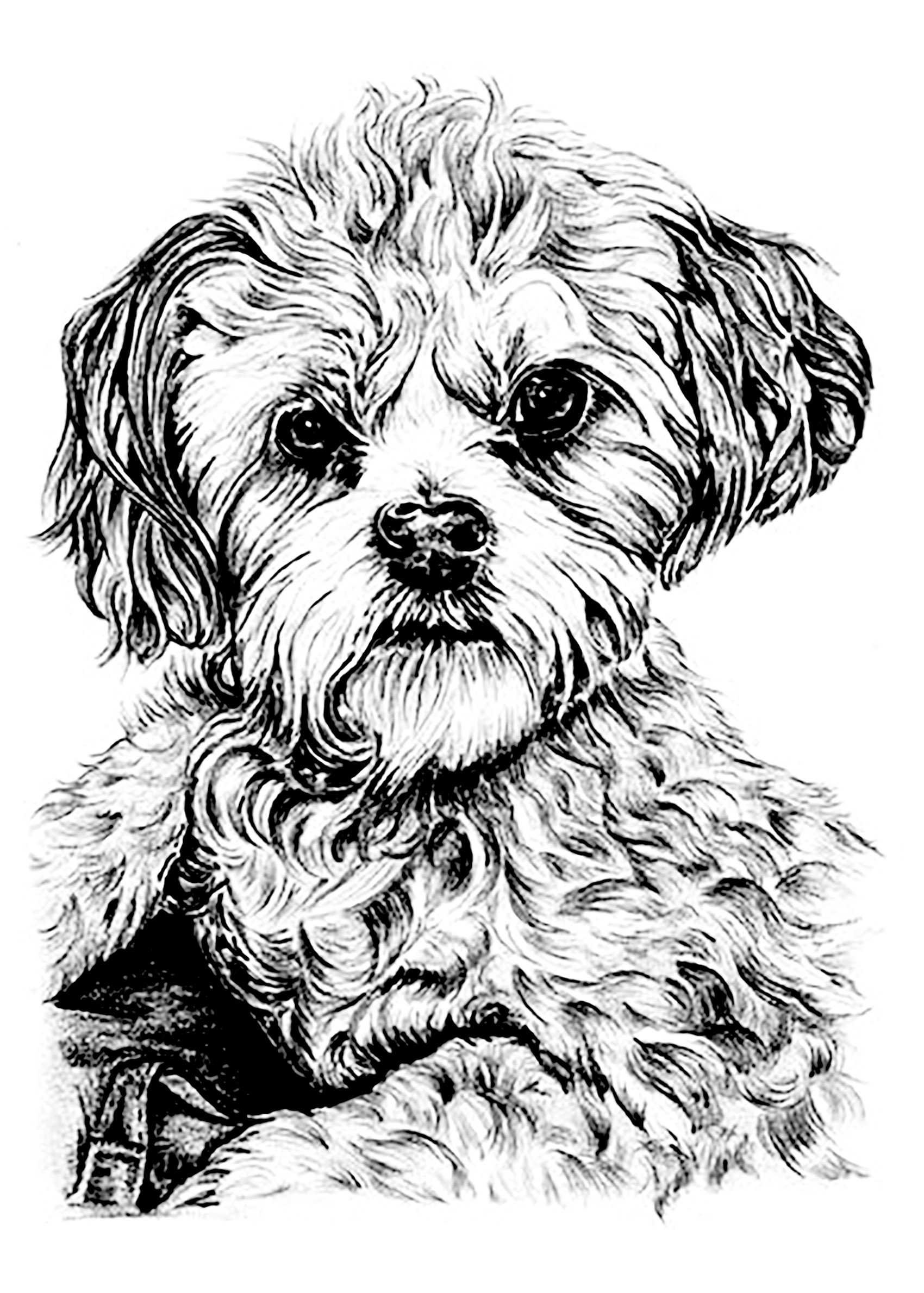 coloring picture dog sad puppy coloring pages at getcoloringscom free picture coloring dog