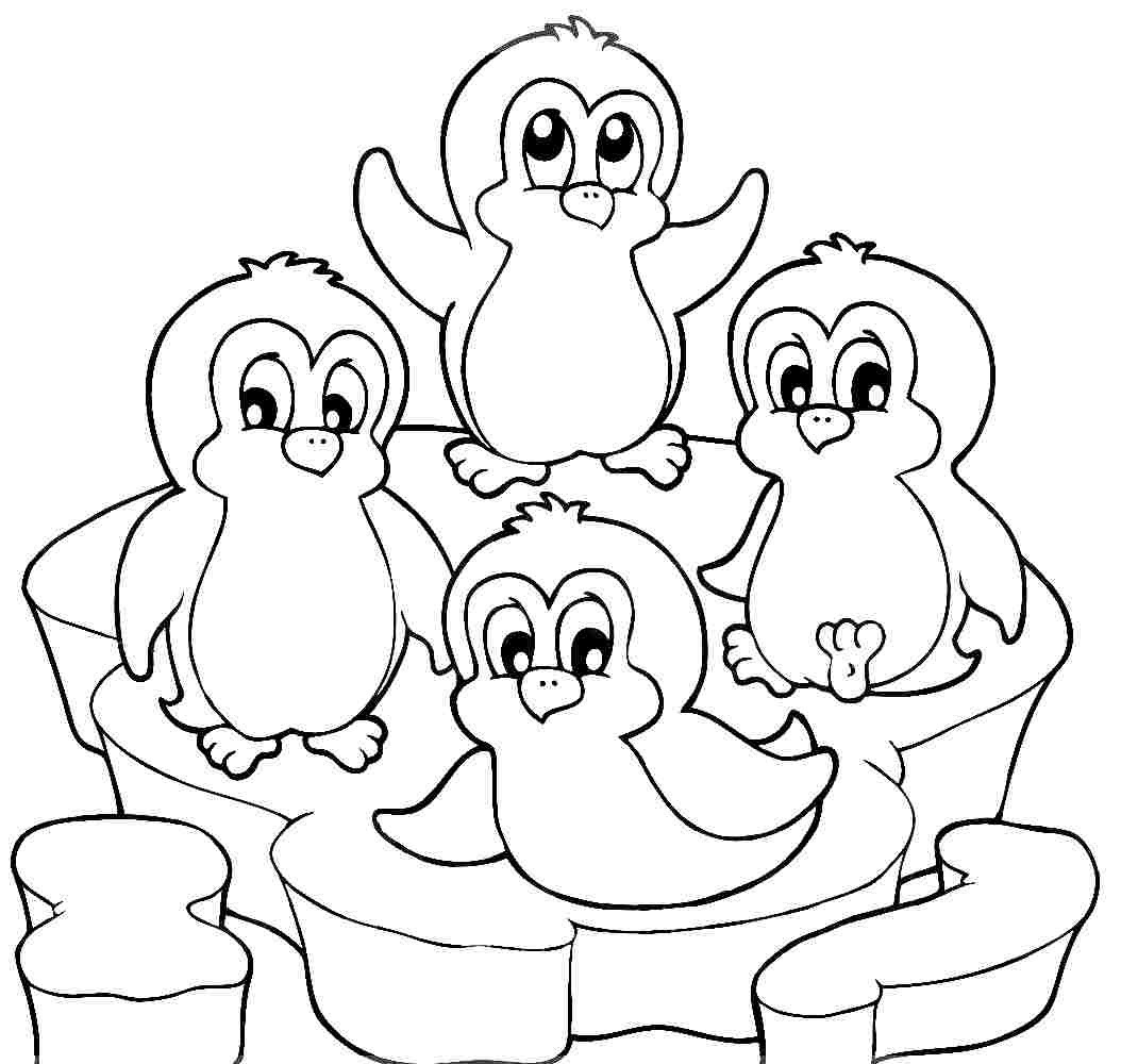 coloring pictures of penguins baby penguin drawing at getdrawings free download coloring pictures of penguins