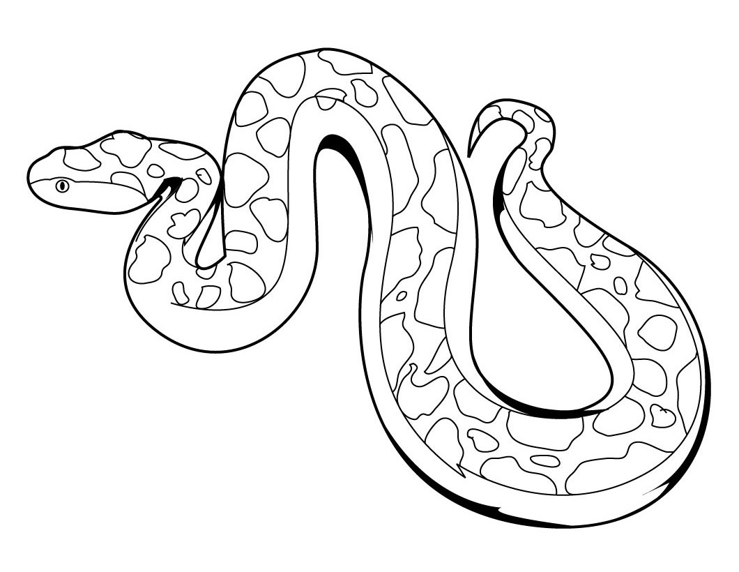 coloring pictures of snakes 9 snake coloring pages jpg psd free premium templates of coloring pictures snakes