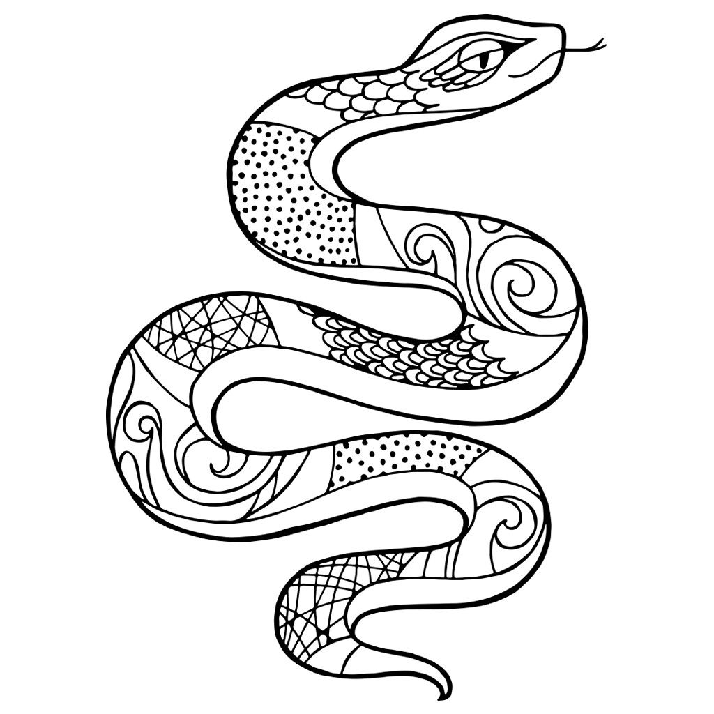 coloring pictures of snakes black racer snake coloring page coloring pages of coloring pictures snakes