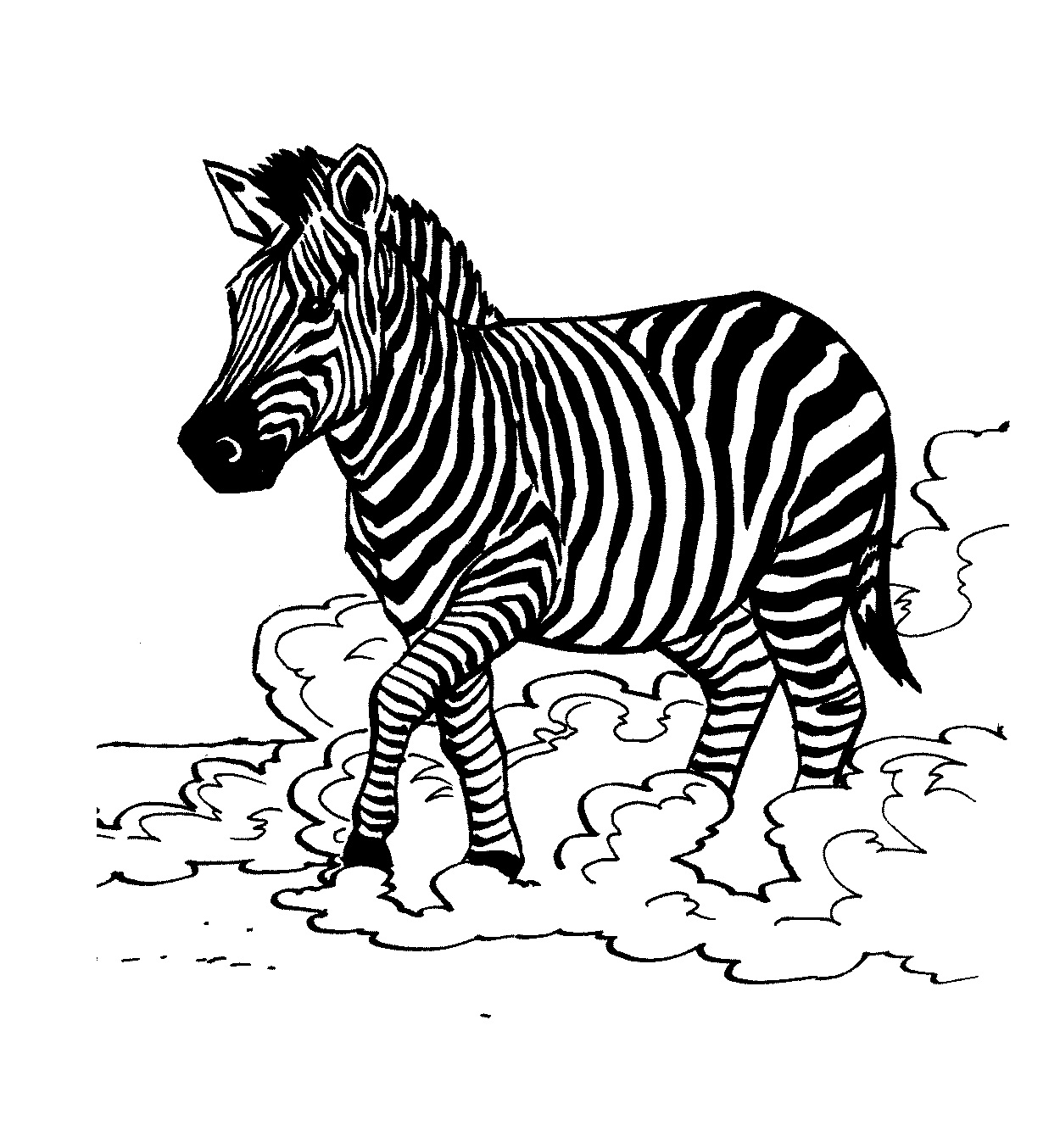coloring pictures of zebras free printable zebra coloring pages for kids coloring zebras of pictures