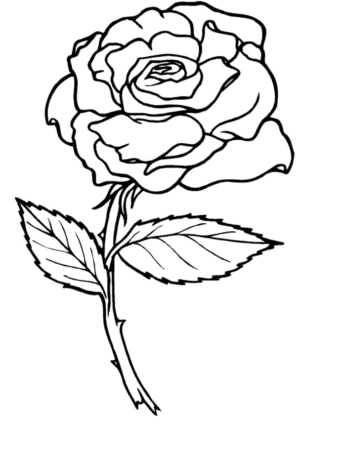 coloring pictures roses free printable flower coloring pages for kids best coloring pictures roses