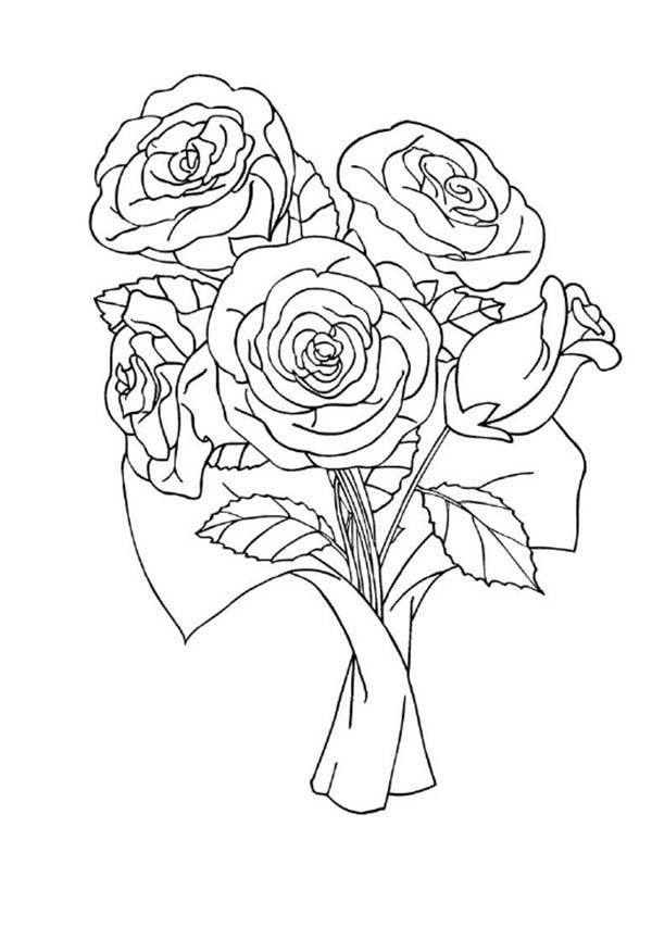 coloring pictures roses free printable roses coloring pages for kids pictures coloring roses 1 2