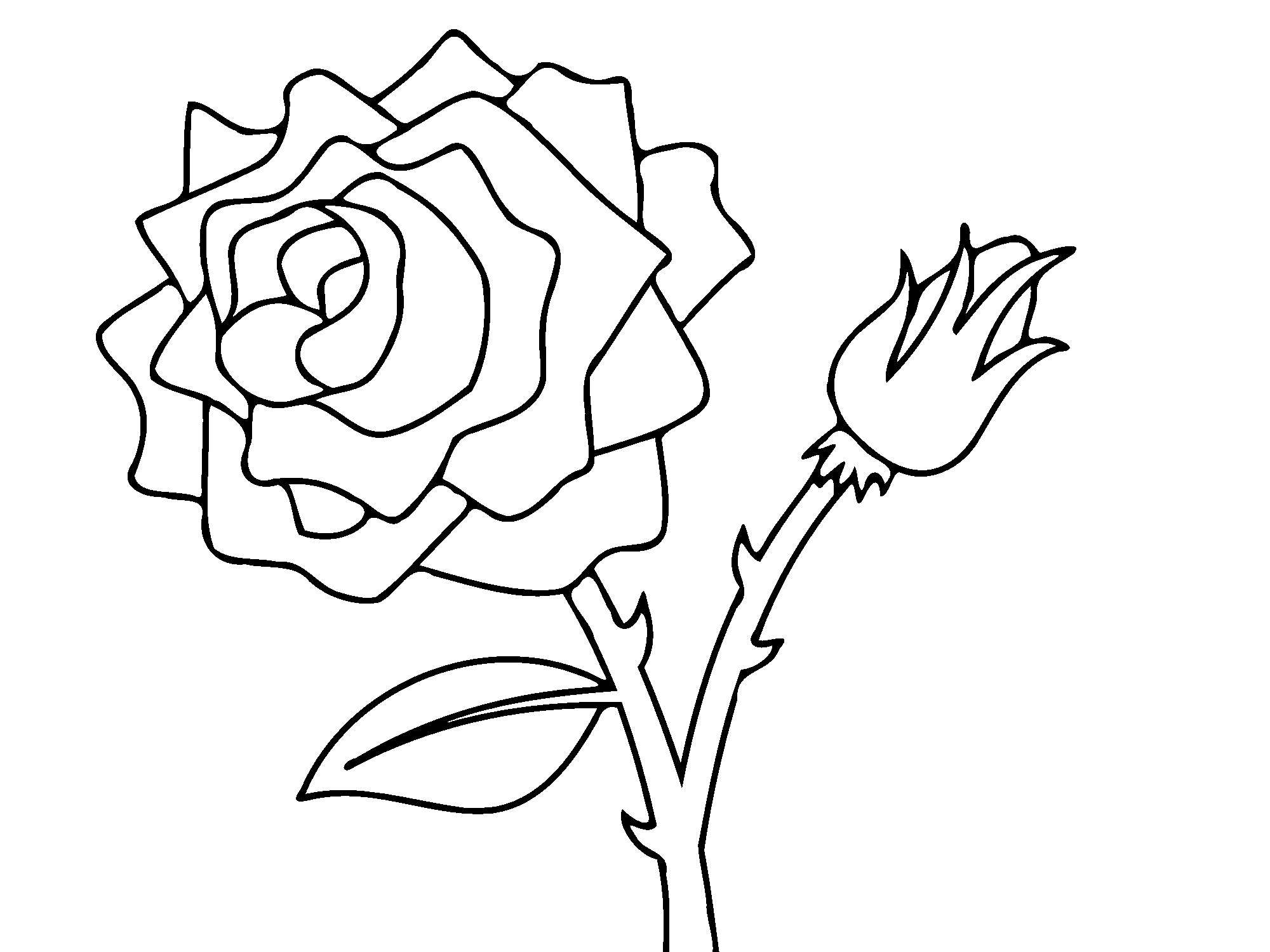 coloring pictures roses rose with three leaves coloring page download print roses coloring pictures