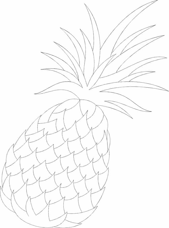 coloring pineapple clipart clipart panda free clipart images clipart coloring pineapple
