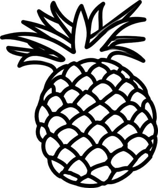 coloring pineapple clipart pineapple clip art clipartsco sketch coloring page coloring clipart pineapple