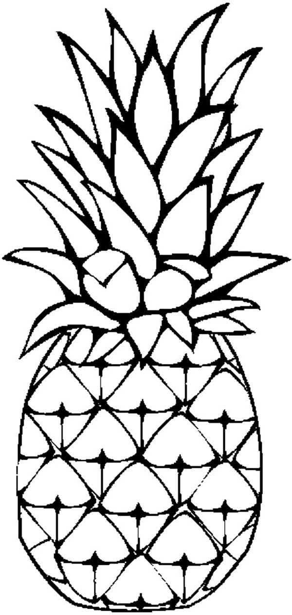 coloring pineapple clipart pineapple drawing at getdrawings free download coloring clipart pineapple